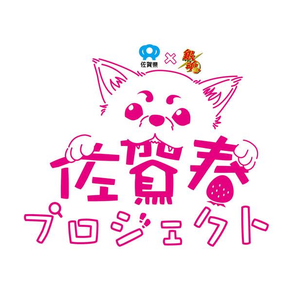 【佐賀県×銀魂】銀さんがついに初めての自治体プロデュース!?